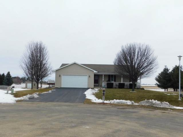 224 Windover Park Court, Rochelle, IL 61068 (MLS #10628439) :: The Spaniak Team