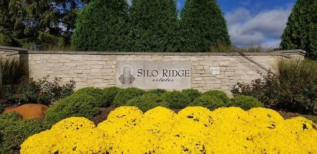 69 Silo Ridge Road E, Orland Park, IL 60467 (MLS #10628820) :: John Lyons Real Estate