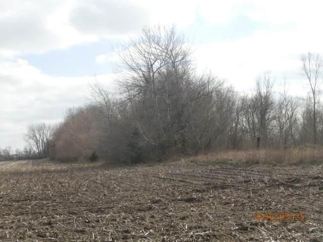Lot 36-30-14W, Chebanse, IL 60922 (MLS #10629008) :: Property Consultants Realty