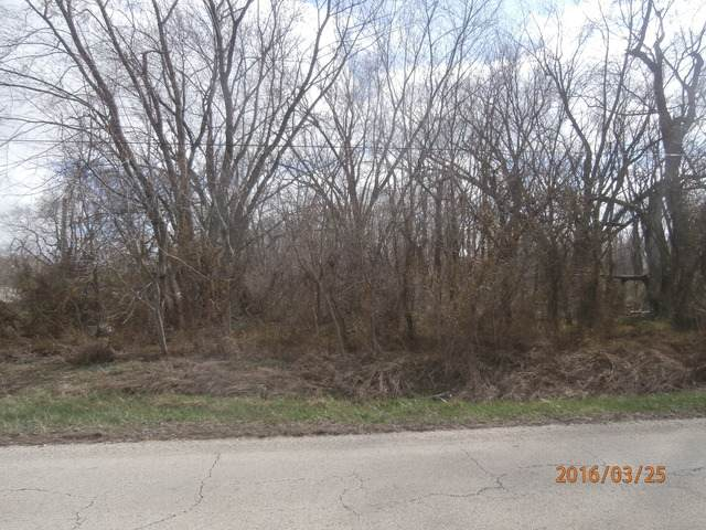 Lot 7 Williams Sub, Chebanse, IL 60922 (MLS #10629028) :: Property Consultants Realty