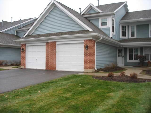 216 Winnsboro Court A, Schaumburg, IL 60193 (MLS #10629159) :: Ani Real Estate