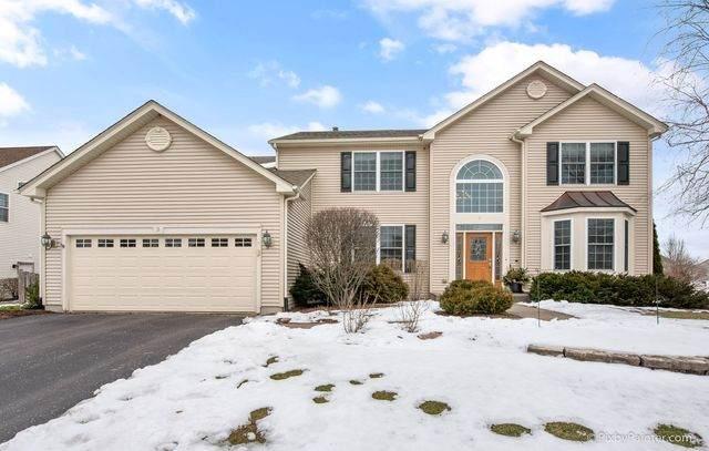 3 Walbridge Court, Algonquin, IL 60102 (MLS #10629370) :: Ryan Dallas Real Estate
