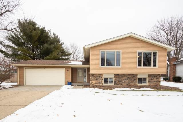 29 New Castle Court, Crystal Lake, IL 60014 (MLS #10629585) :: Property Consultants Realty