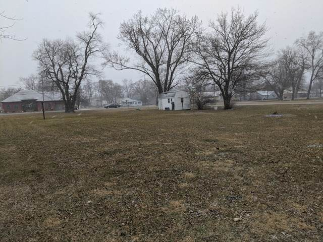 707 W Main Street, Braidwood, IL 60408 (MLS #10630291) :: Berkshire Hathaway HomeServices Snyder Real Estate