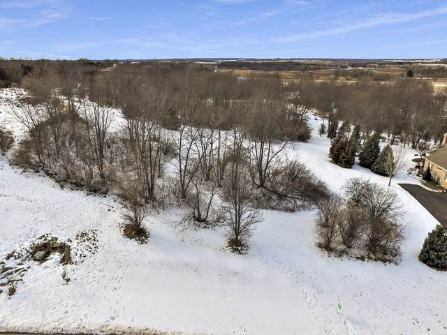 7009 Wildflower Court, Spring Grove, IL 60081 (MLS #10630344) :: Property Consultants Realty