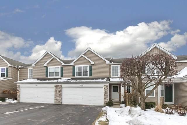 729 Savannah Lane, Crystal Lake, IL 60014 (MLS #10630811) :: Property Consultants Realty