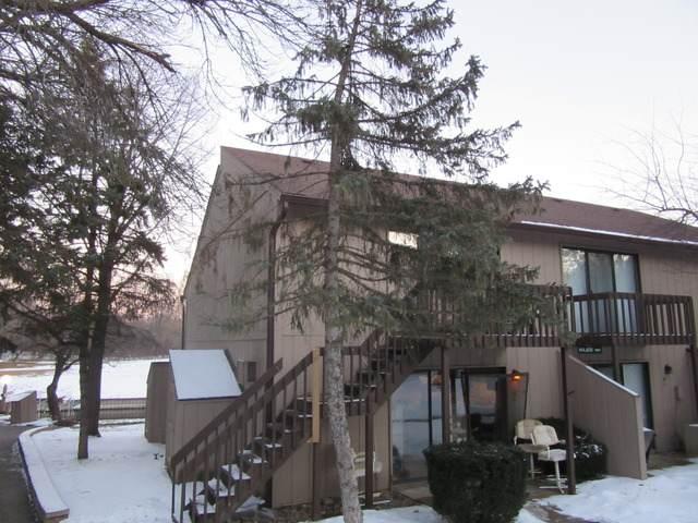 26 Jamaica Colony Street #9, Fox Lake, IL 60020 (MLS #10630841) :: Baz Network   Keller Williams Elite