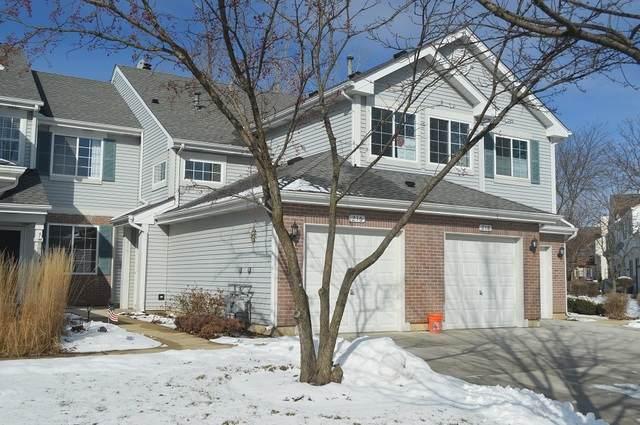 216 Sierra Pass Drive 5-4, Schaumburg, IL 60194 (MLS #10631726) :: Ani Real Estate