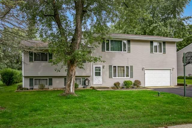 1106 Quincy Avenue, Johnsburg, IL 60051 (MLS #10631999) :: John Lyons Real Estate