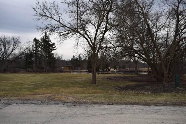 325 Sharon Drive, Sleepy Hollow, IL 60118 (MLS #10632530) :: Knott's Real Estate Team