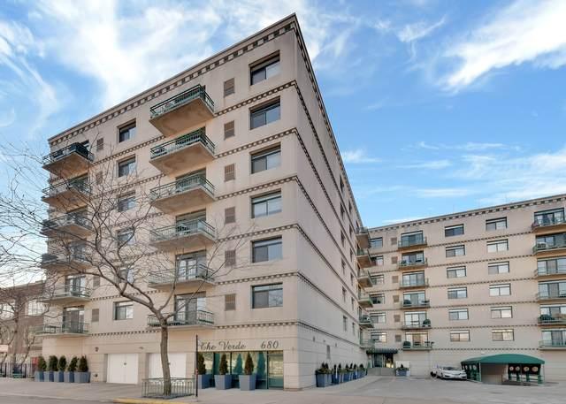 680 N Green Street #209, Chicago, IL 60642 (MLS #10632734) :: Helen Oliveri Real Estate