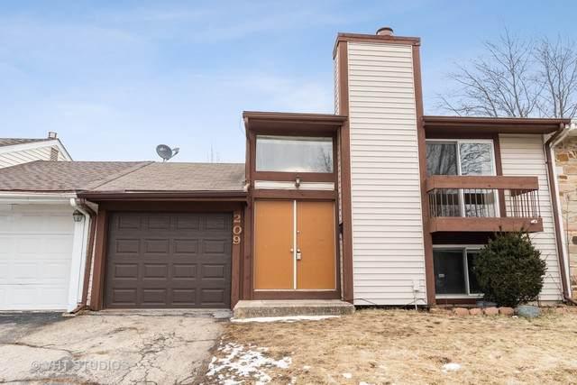 209 Elmwood Road, Romeoville, IL 60446 (MLS #10632835) :: The Wexler Group at Keller Williams Preferred Realty