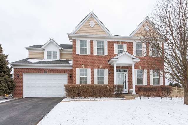 399 Brockton Avenue, Elgin, IL 60124 (MLS #10633329) :: Helen Oliveri Real Estate