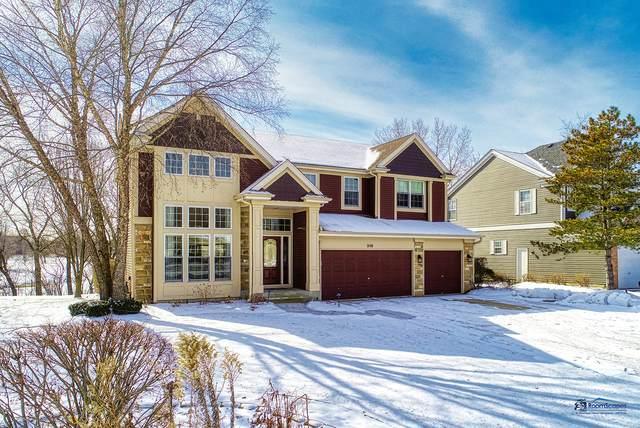 318 Checker Drive, Buffalo Grove, IL 60089 (MLS #10633384) :: Baz Network | Keller Williams Elite