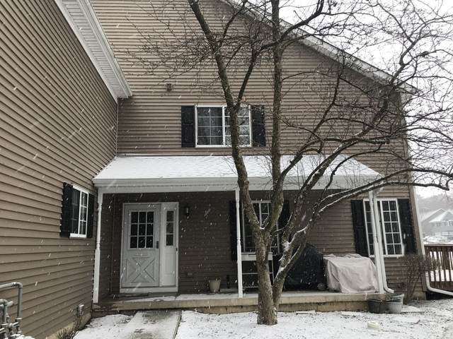 453 Village Creek Drive, Lake In The Hills, IL 60156 (MLS #10633948) :: The Wexler Group at Keller Williams Preferred Realty