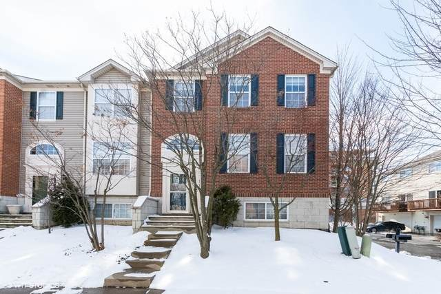 111 Patrick Avenue, Willow Springs, IL 60480 (MLS #10634174) :: John Lyons Real Estate