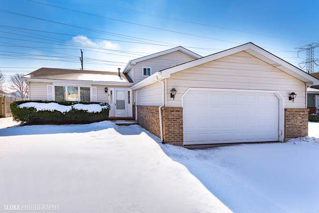 281 Cascade Drive, Crystal Lake, IL 60012 (MLS #10634566) :: Property Consultants Realty