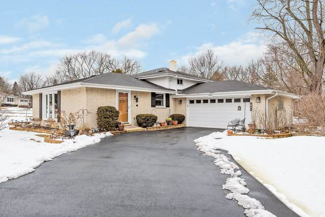 Darien, IL 60561 :: Ani Real Estate