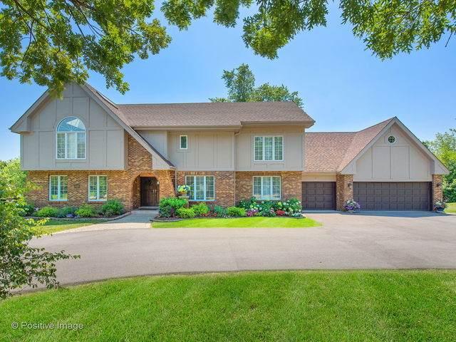 10S420 Glenn Drive, Burr Ridge, IL 60527 (MLS #10634676) :: Baz Network | Keller Williams Elite
