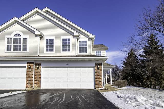 14 Peach Tree Court, Algonquin, IL 60102 (MLS #10634822) :: Ryan Dallas Real Estate