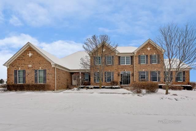 17 Tournament Drive N, Hawthorn Woods, IL 60047 (MLS #10635103) :: Helen Oliveri Real Estate