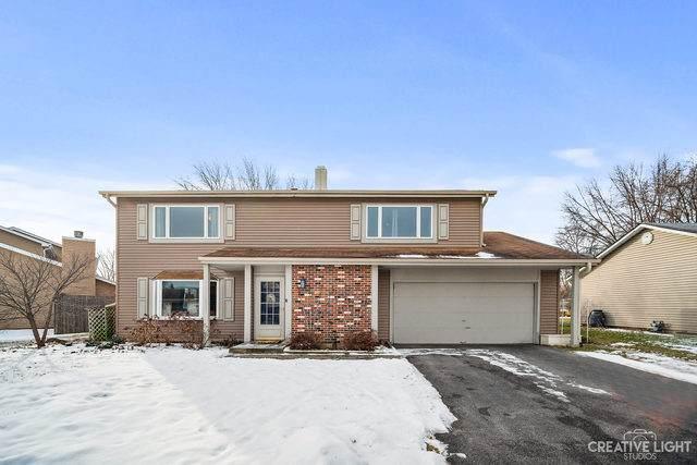 713 Coral Avenue, Bartlett, IL 60103 (MLS #10635173) :: Ani Real Estate