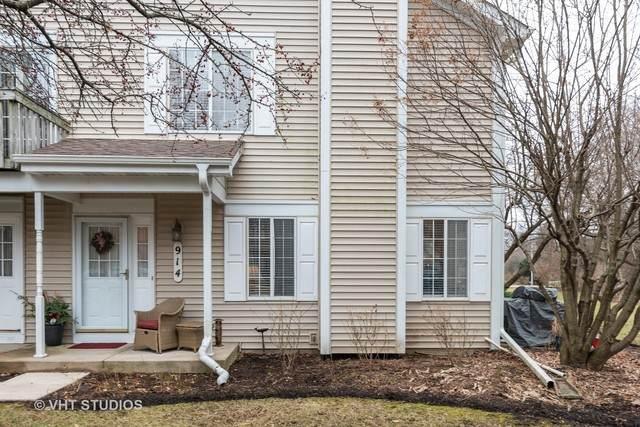 914 Surrey Lane, Sleepy Hollow, IL 60118 (MLS #10635176) :: BN Homes Group