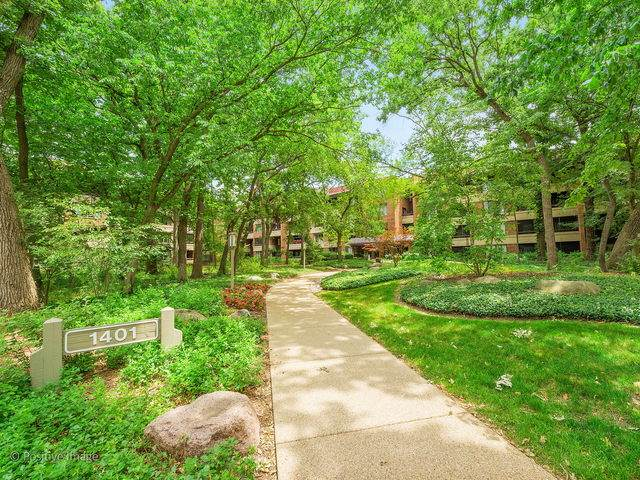 1401 Burr Oak Road 309B, Hinsdale, IL 60521 (MLS #10635273) :: John Lyons Real Estate
