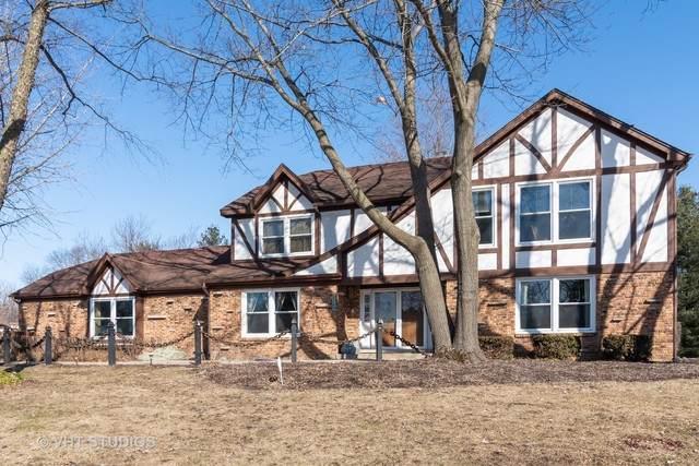 1100 Robinhood Drive, Elgin, IL 60120 (MLS #10635402) :: BN Homes Group
