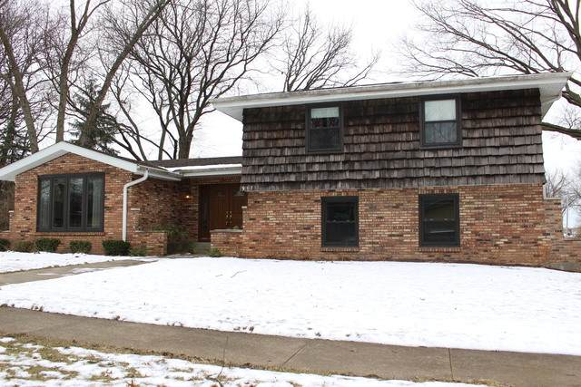 917 Putnam Drive, Lockport, IL 60441 (MLS #10635450) :: Property Consultants Realty
