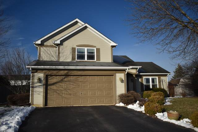 3 Ash Court, Bolingbrook, IL 60490 (MLS #10635474) :: BN Homes Group