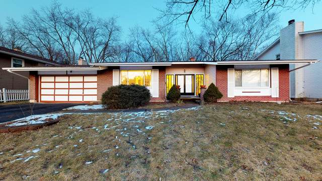 6009 Perry Drive, Woodridge, IL 60517 (MLS #10635639) :: Property Consultants Realty