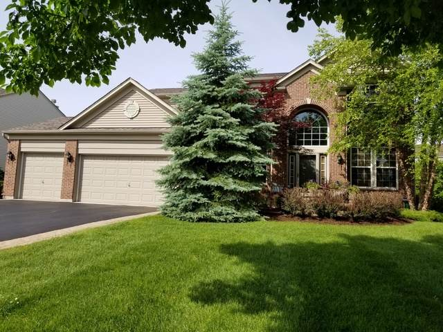 781 Porter Circle, Lindenhurst, IL 60046 (MLS #10635833) :: Baz Network | Keller Williams Elite