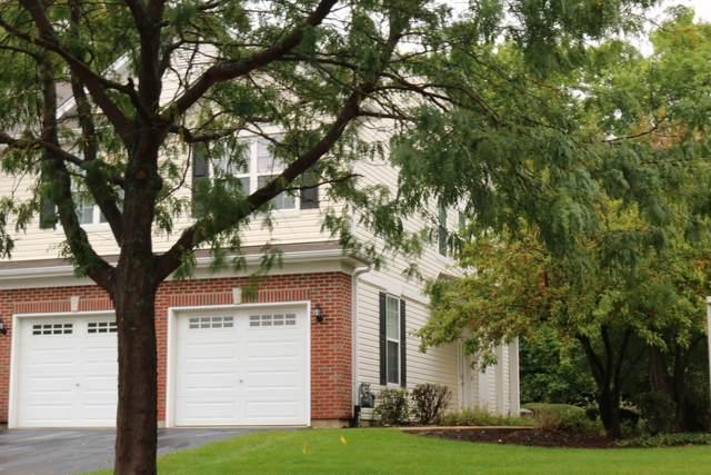 1360 W Alder Creek Drive, Romeoville, IL 60446 (MLS #10636097) :: The Dena Furlow Team - Keller Williams Realty
