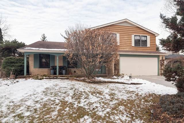 1521 Chickasaw Drive, Naperville, IL 60563 (MLS #10636221) :: The Spaniak Team