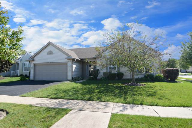 14063 Sterling Lane, Huntley, IL 60142 (MLS #10636369) :: Ryan Dallas Real Estate