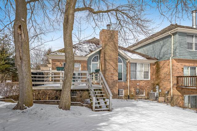 1000 Heron Way, Woodstock, IL 60098 (MLS #10636395) :: Suburban Life Realty