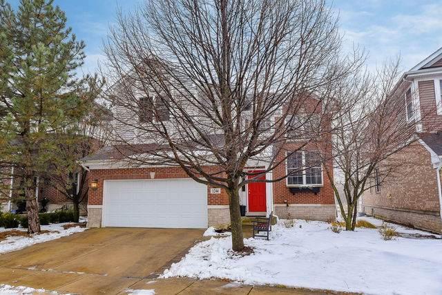 1244 Lake Shore Drive, Lisle, IL 60532 (MLS #10636566) :: Angela Walker Homes Real Estate Group