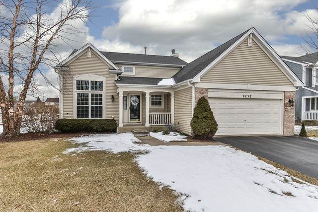 9732 Chetwood Drive, Huntley, IL 60142 (MLS #10636849) :: Ryan Dallas Real Estate