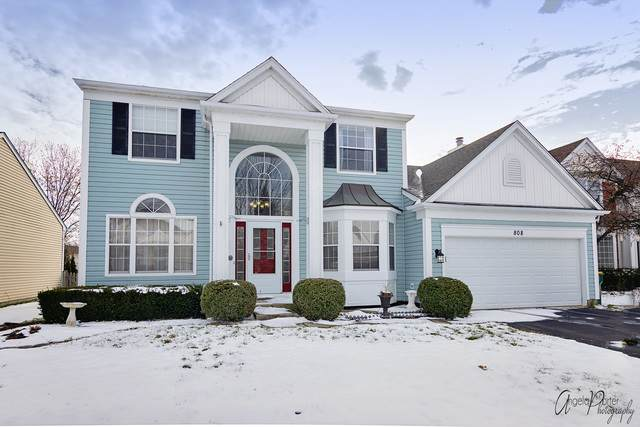 808 Tylerton Circle, Grayslake, IL 60030 (MLS #10637130) :: Property Consultants Realty