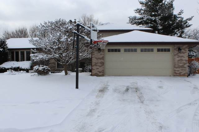 1105 Alamosa Street, New Lenox, IL 60451 (MLS #10637132) :: Century 21 Affiliated