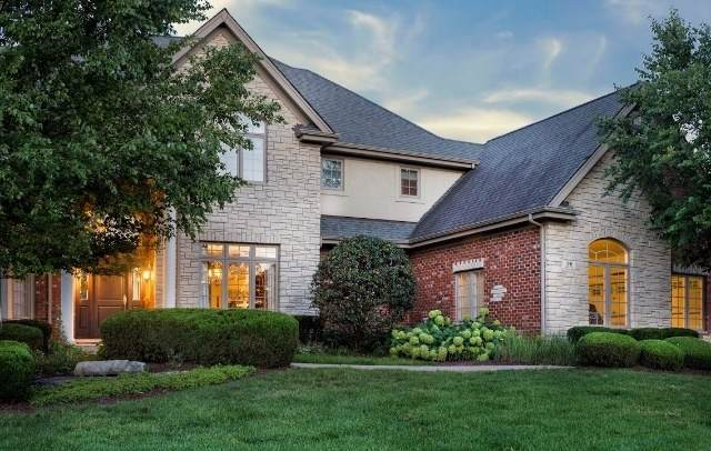 96 Rose Court, Lemont, IL 60439 (MLS #10637192) :: John Lyons Real Estate