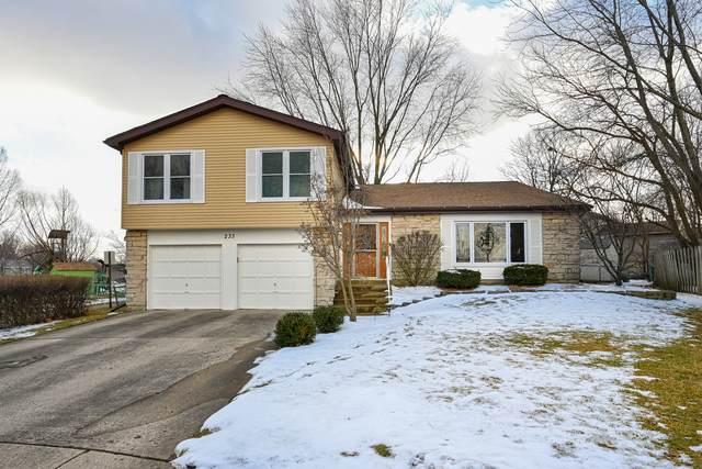 233 Seneca Court, Bolingbrook, IL 60440 (MLS #10637254) :: Property Consultants Realty