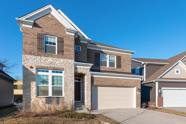 1430 Somerset Place, Barrington, IL 60010 (MLS #10637457) :: Ani Real Estate