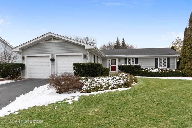972 W Bauer Road, Naperville, IL 60563 (MLS #10637535) :: Helen Oliveri Real Estate