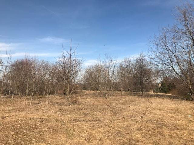 Lot 10 Bridle Creek Drive, St. Charles, IL 60174 (MLS #10637565) :: The Wexler Group at Keller Williams Preferred Realty