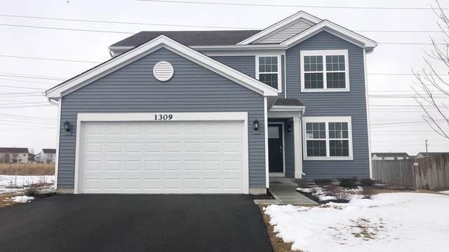 1309 Prairie Creek Trail, Joliet, IL 60431 (MLS #10637616) :: Helen Oliveri Real Estate