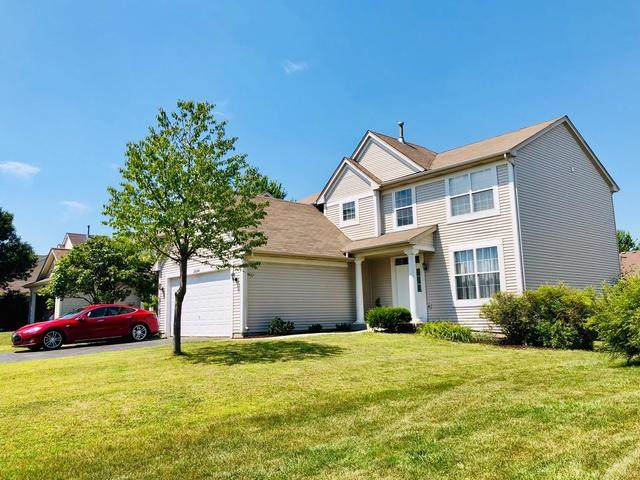 24244 Apple Tree Lane, Plainfield, IL 60585 (MLS #10637639) :: Property Consultants Realty