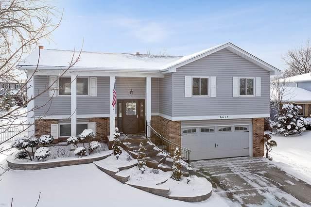 6613 Foxtree Avenue, Woodridge, IL 60517 (MLS #10637651) :: Property Consultants Realty