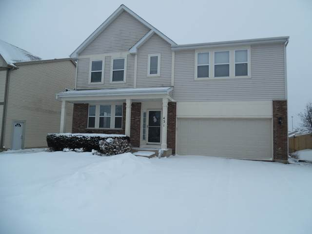 431 Niagara Drive, Volo, IL 60073 (MLS #10637695) :: Baz Network | Keller Williams Elite